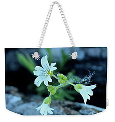 Weekender Tote Bag featuring the photograph Wild Chickweed by Ann E Robson