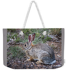 Wild Colorado Cottontail In The Brush Weekender Tote Bag
