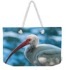 Wild Eyed Ibis Weekender Tote Bag