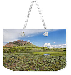 Weekender Tote Bag featuring the photograph Wild Flowers And Grasses At Yellowstone by John M Bailey