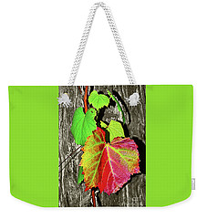 Weekender Tote Bag featuring the photograph Wild Grape Vine By Kaye Menner by Kaye Menner
