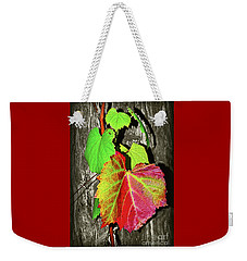 Weekender Tote Bag featuring the photograph Wild Grape Vine II By Kaye Menner by Kaye Menner