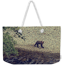 Wild Grizzly Bear Weekender Tote Bag by Patricia Hofmeester