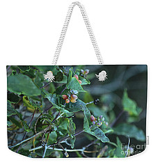 Weekender Tote Bag featuring the photograph Wild Honeysuckle by Ann E Robson