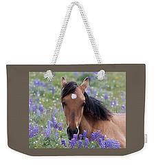 Wild Horse Among Lupines Weekender Tote Bag
