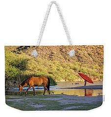 Wild Horse On River With People In Water Weekender Tote Bag