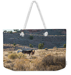 Weekender Tote Bag featuring the photograph Wild Horses In Monument Valley by Jon Glaser