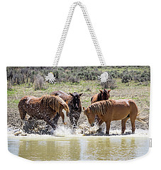 Wild Mustang Stallions Playing In The Water - Sand Wash Basin Weekender Tote Bag