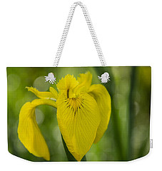Wild Iris Weekender Tote Bag by Randy Bayne