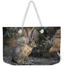 Wild Jackrabbit Weekender Tote Bag