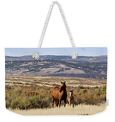 Wild Mare With Young Foal In Sand Wash Basin Weekender Tote Bag