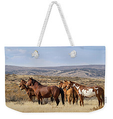 Wild Mustang Family Band In Sand Wash Basin Weekender Tote Bag