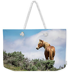 Wild Mustang Stallion Of Sand Wash Basin Weekender Tote Bag
