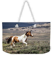 Wild Mustang Stallion On The Move In Sand Wash Basin Weekender Tote Bag