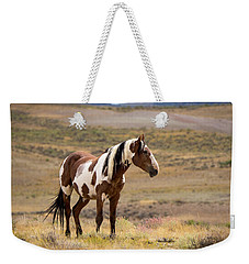 Wild Mustang Stallion Picasso Of Sand Wash Basin Weekender Tote Bag
