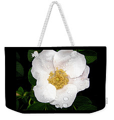 Weekender Tote Bag featuring the photograph Wild Rose by Stephanie Moore