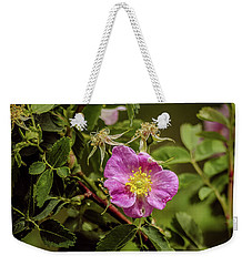 Weekender Tote Bag featuring the photograph Wild Roses Of Summer by Yeates Photography