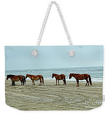 Wild Stallion And Harem  Weekender Tote Bag