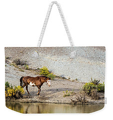Wild Stallion Of Sand Wash Basin, Raindance Weekender Tote Bag