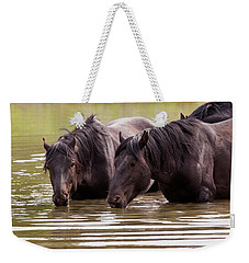 Wild Stallions At The Water Hole Weekender Tote Bag