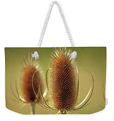 Weekender Tote Bag featuring the photograph Wild Teasel by Bruce Patrick Smith