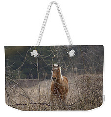 Wild Thing Weekender Tote Bag