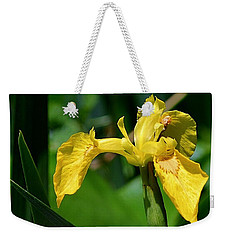 Wild Yellow Iris Weekender Tote Bag by Kathy Eickenberg