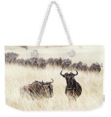 Wildebesst In Tall Grass Field In Kenya Weekender Tote Bag