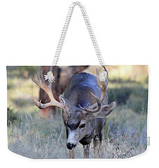 Weekender Tote Bag featuring the photograph Wildlife Wonder by Shane Bechler