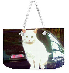 Will Wash Car For Treats Weekender Tote Bag by Denise Fulmer