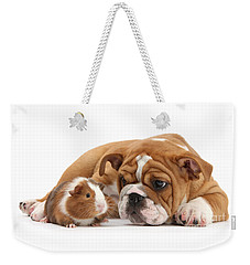 Will You Be My Friend? Weekender Tote Bag