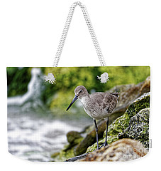 Willet By The Sea Weekender Tote Bag