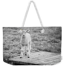 Williamsburg Lamb Weekender Tote Bag