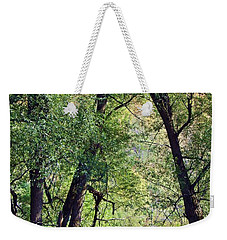 Willow Cathedral Weekender Tote Bag