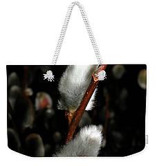 Willow Weekender Tote Bag by Trish Tritz