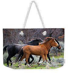 Weekender Tote Bag featuring the photograph Wind In The Manes by Mike Dawson