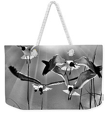 Weekender Tote Bag featuring the photograph Wind Swept Bw by Jan Amiss Photography