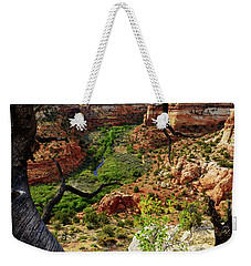 Weekender Tote Bag featuring the photograph Window by Chad Dutson