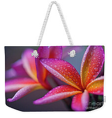 Weekender Tote Bag featuring the photograph Windows Into Nature by Sharon Mau