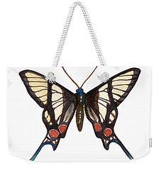 Weekender Tote Bag featuring the painting Winged Jewels 4, Watercolor Tropical Butterflie Black White Red Spots by Audrey Jeanne Roberts