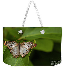Wings Of A White Peacock Butterfly  Weekender Tote Bag