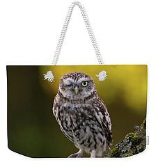 Winking Little Owl Weekender Tote Bag