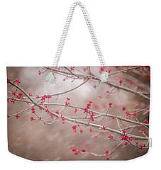 Weekender Tote Bag featuring the photograph Winter And Spring by Terry DeLuco