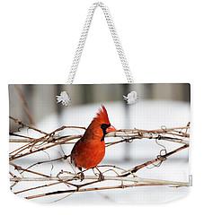 Winter Cardinal 12 Weekender Tote Bag by David Stasiak