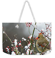 Weekender Tote Bag featuring the photograph Winter Cardinal by Gary Wightman