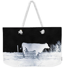 Weekender Tote Bag featuring the photograph Winter Cow - Cow by Janine Riley