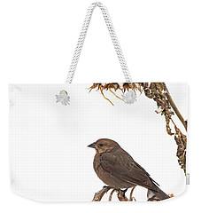 Winter Cowbird On Sunflower Weekender Tote Bag