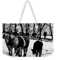 Winter Cows Weekender Tote Bag by Elaine Hunter