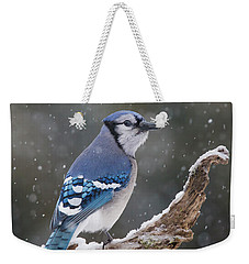 Weekender Tote Bag featuring the photograph Winter Jay by Mircea Costina Photography