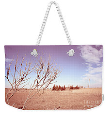 Weekender Tote Bag featuring the photograph Winter Marshlands by Colleen Kammerer